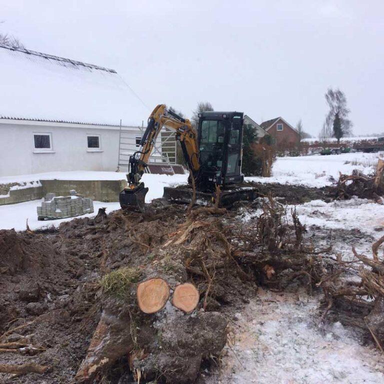 Opgravning af trærødder
